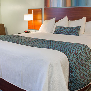 Boutique Guest Rooms Located In Downtown Berkeley