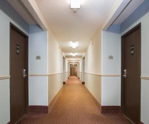 Hotel Mira Vista Berkeley - Hotel Mira Vista Interior Corridor